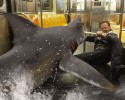 "In this image released by Syfy, Ian Ziering, as Fin Shepard battles a shark on a New York City subway in a scene from ""Sharknado 2: The Second One,"" premiering Wednesday at 9 p.m. EDT."